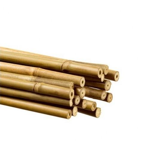 Tuteurs bambou Ø12/14 mm