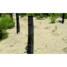 Mailles renforcées brise-vent arboricole