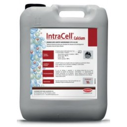 Stimulant foliaire Intracell Calcium