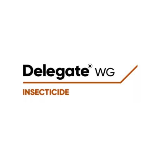 Delegate WG 1 kg