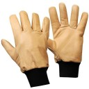 Gants taille hiver Rostaing Vigne